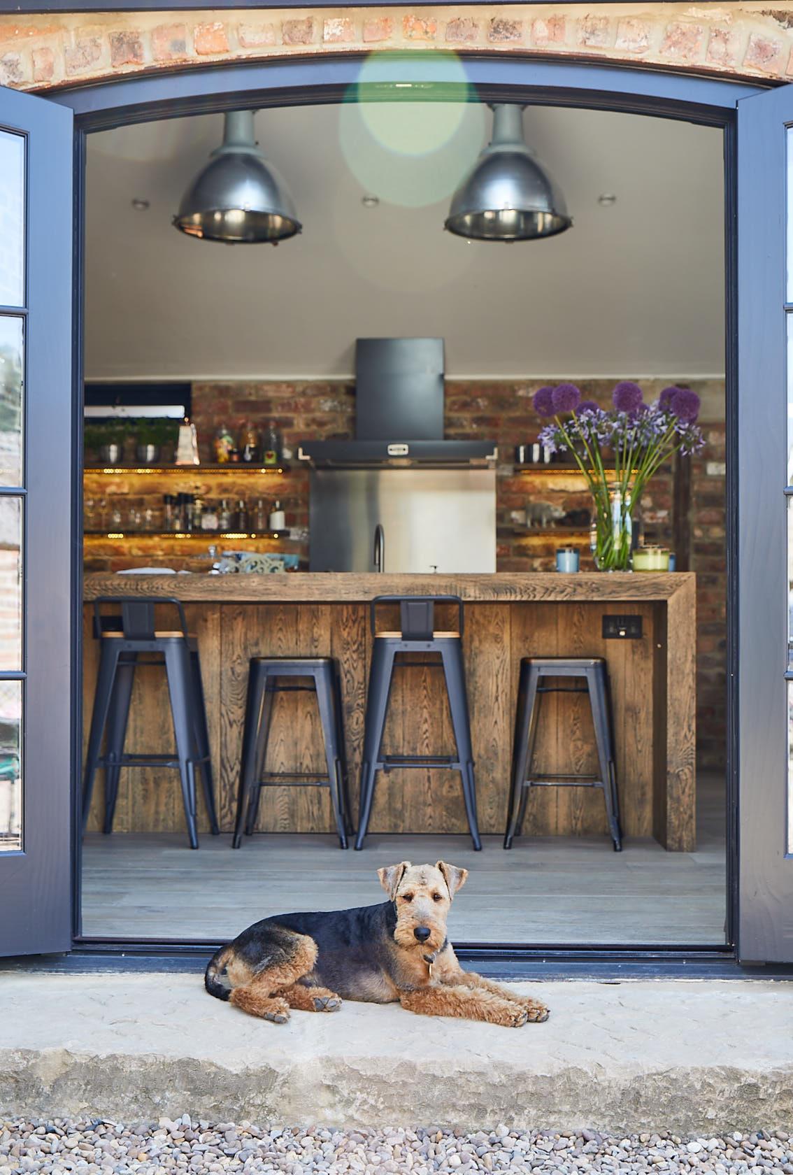 Dog sat outside in front of bespoke industrial kitchen