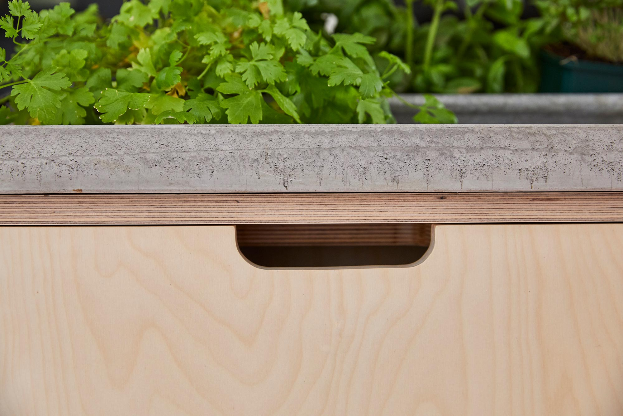Integrated bin unit with birch plywood door and solid concrete worktop