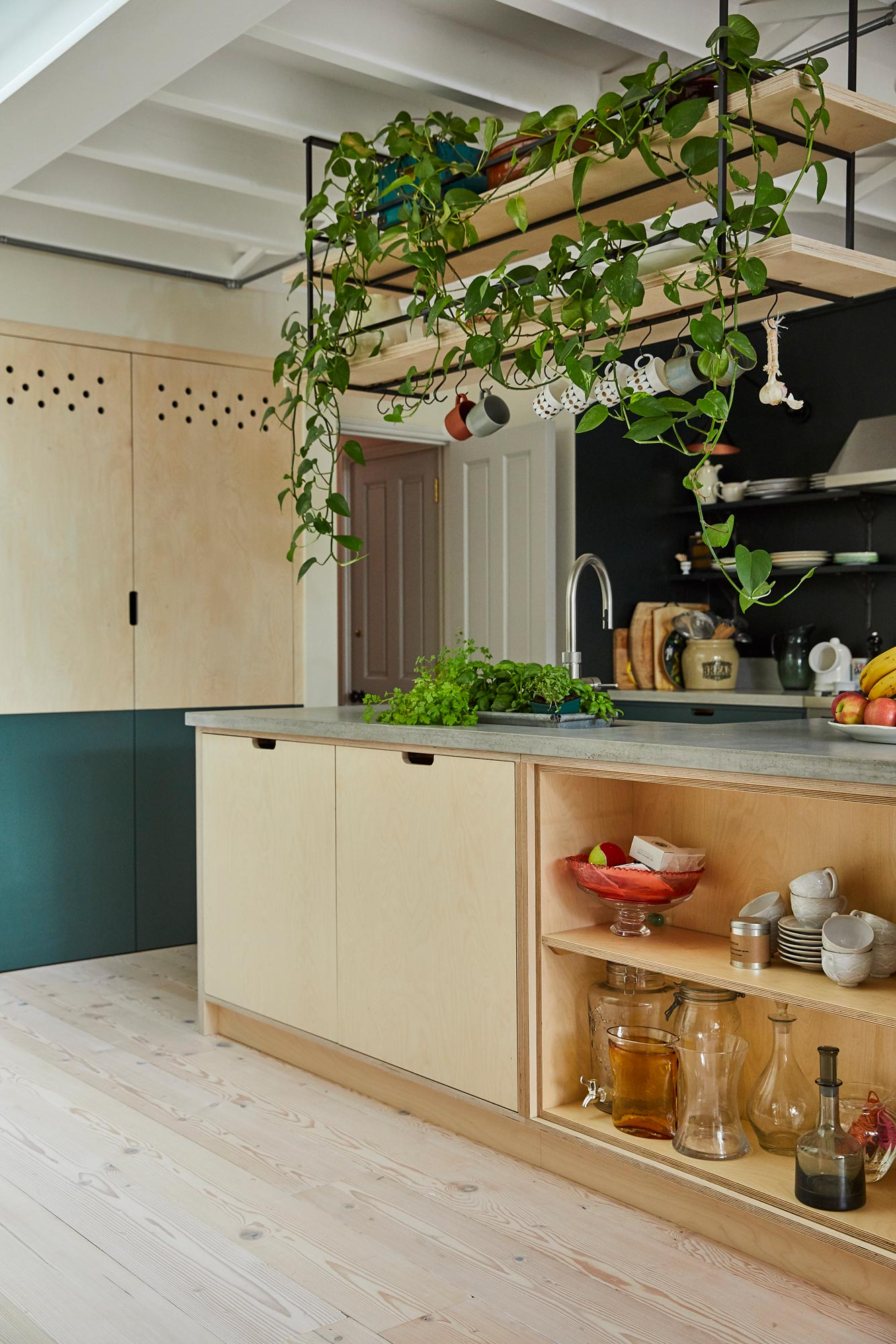 Bespoke plywood kitchen island with hanging open shelves above with plants hanging down
