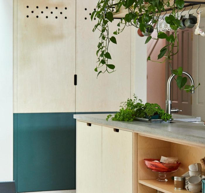 Birch plywood pantry unit with half the door painted green