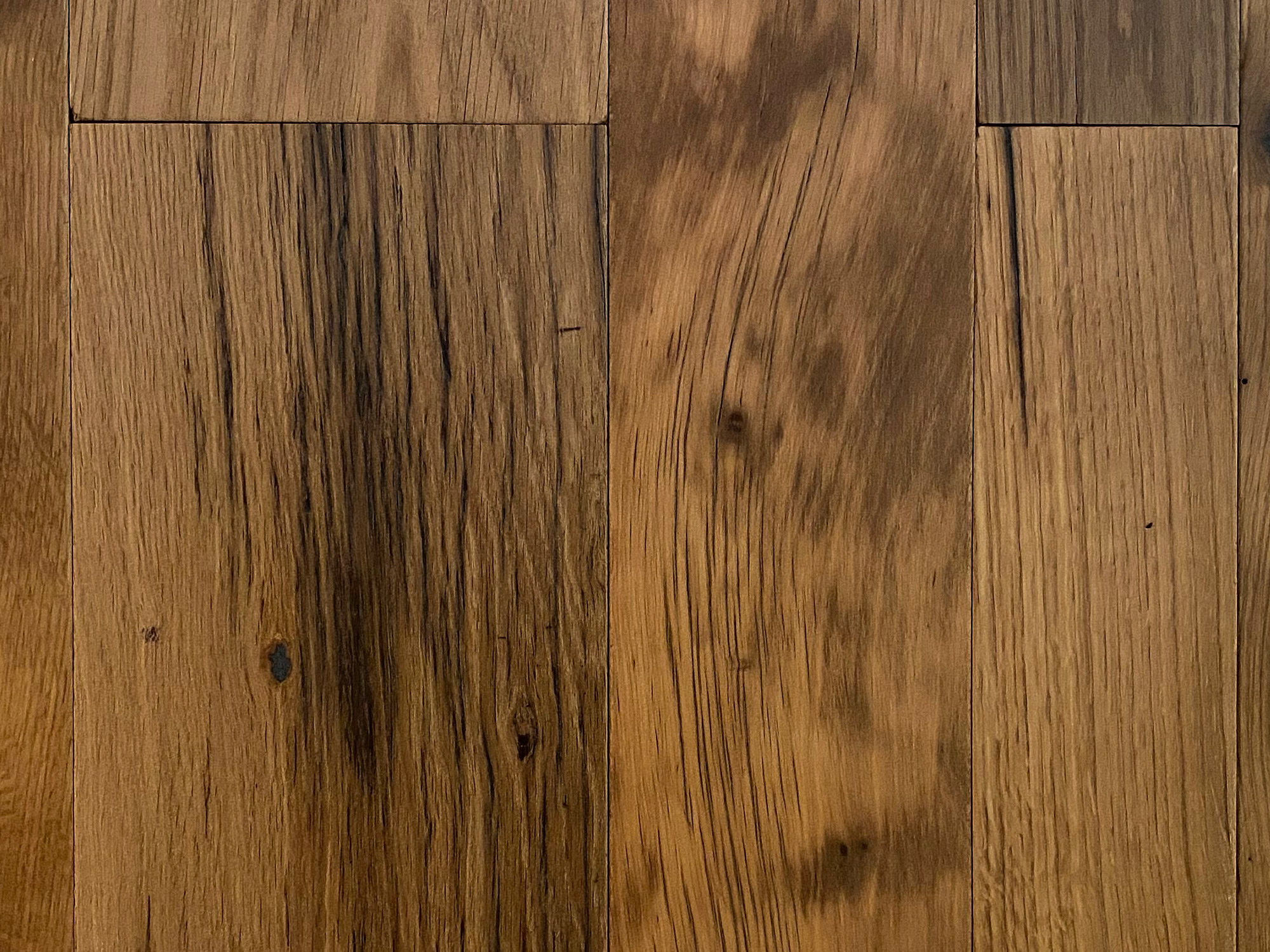 Knots of oak floor board