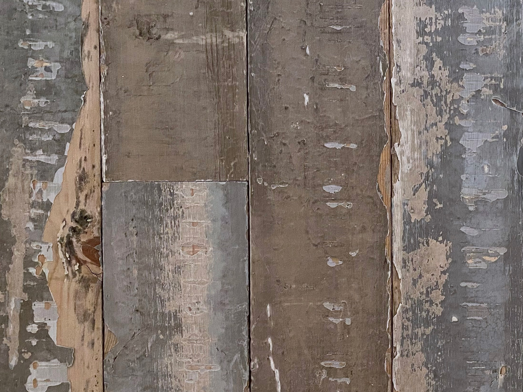 Reclaimed pine cladding with paint