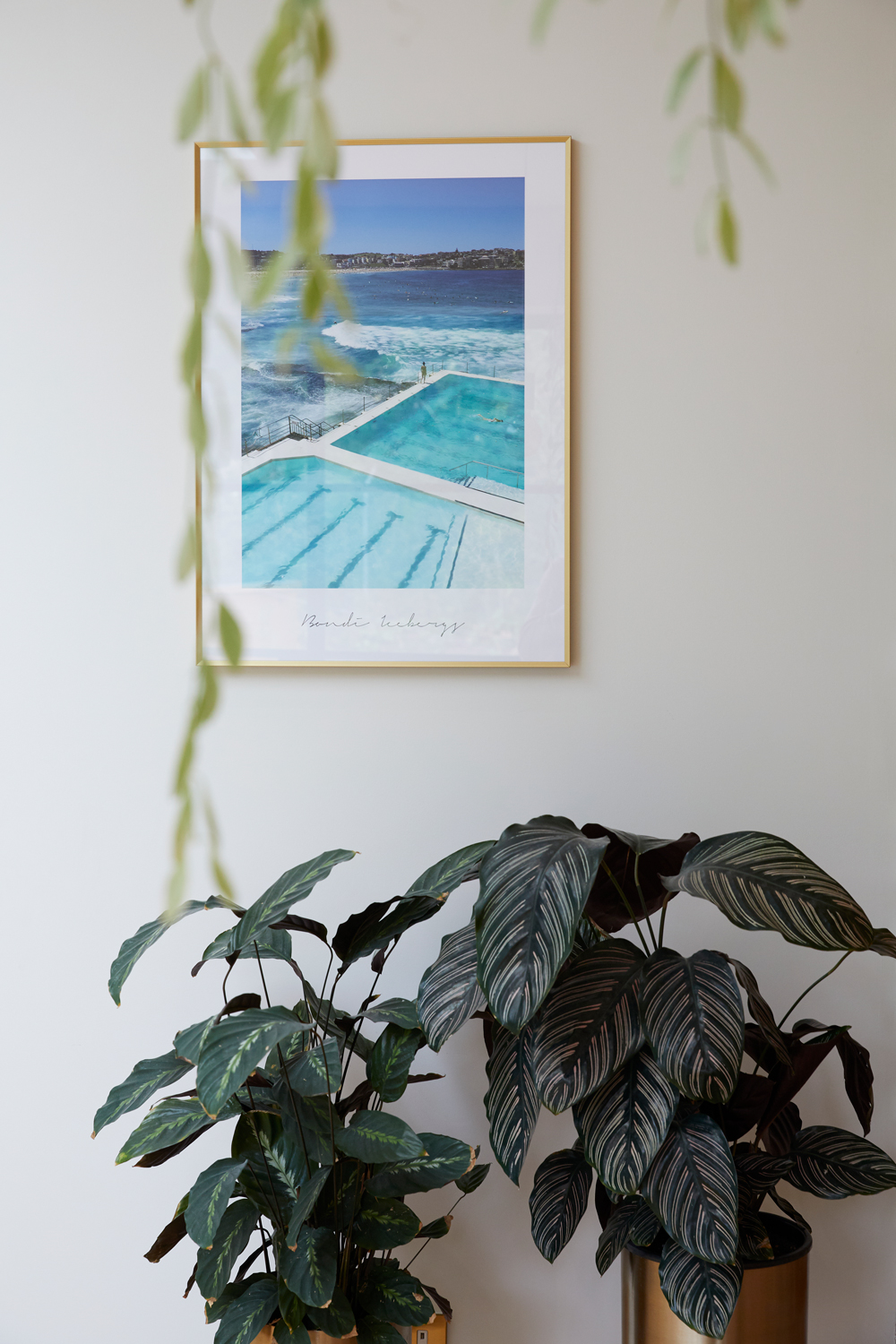 Swimming pool picture hangs on wall with floor standing planters