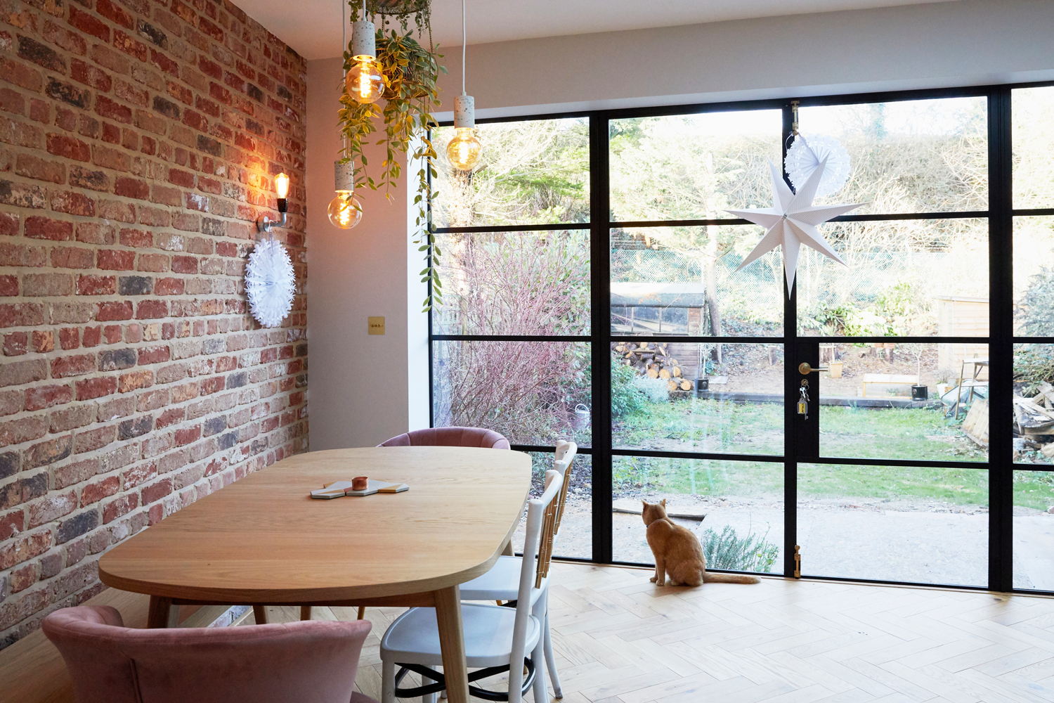 Cat looks out of Crittall style doors in front of modern oak dining table and upholstered chairs