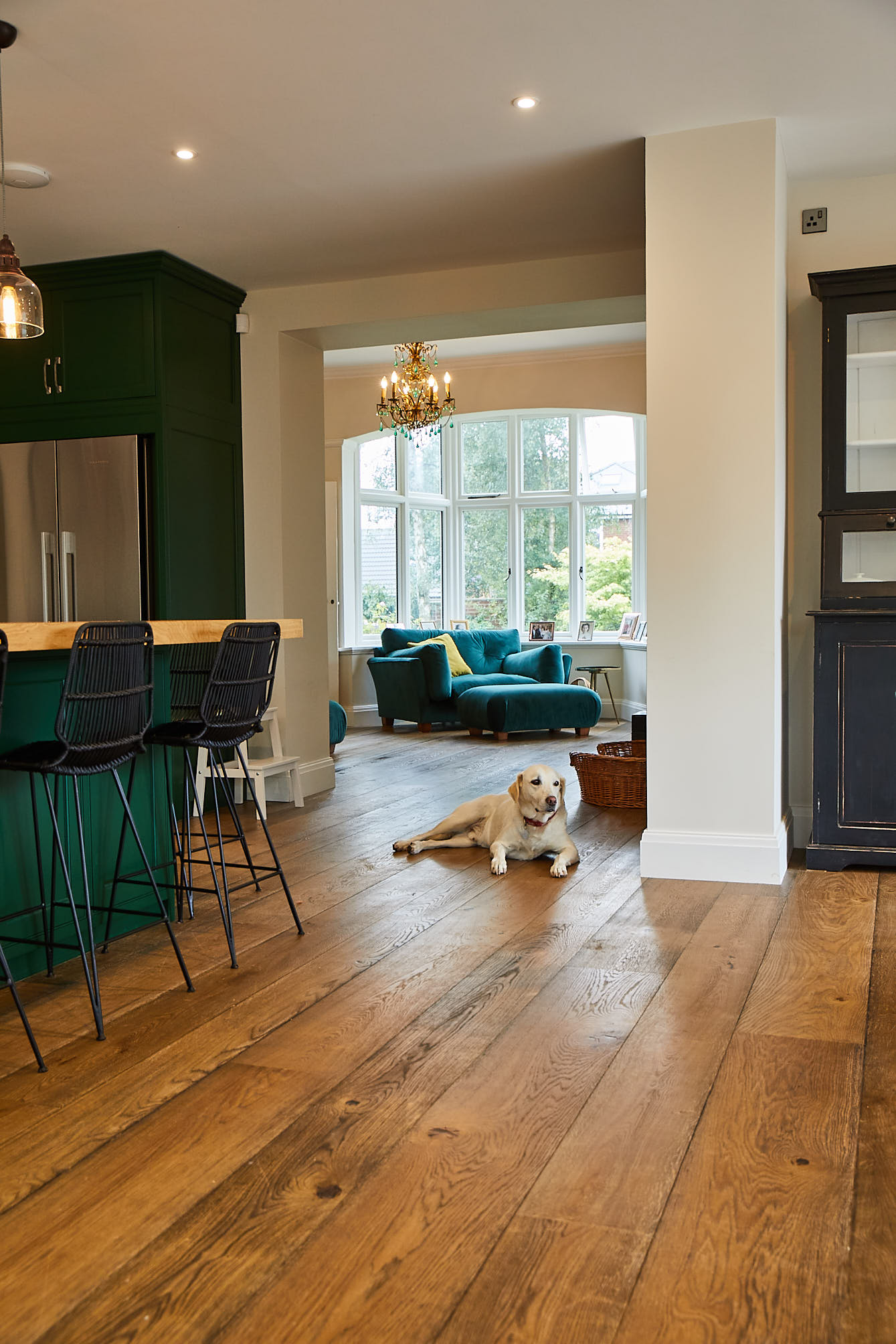 Dog sits in kitchen with oak flooring
