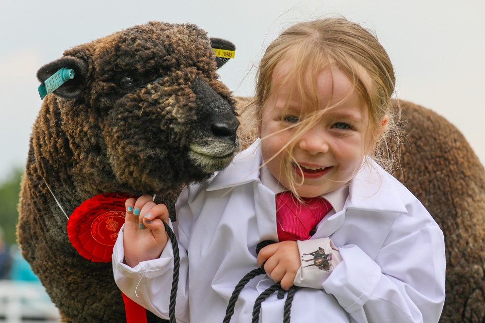 Girl holding sheep